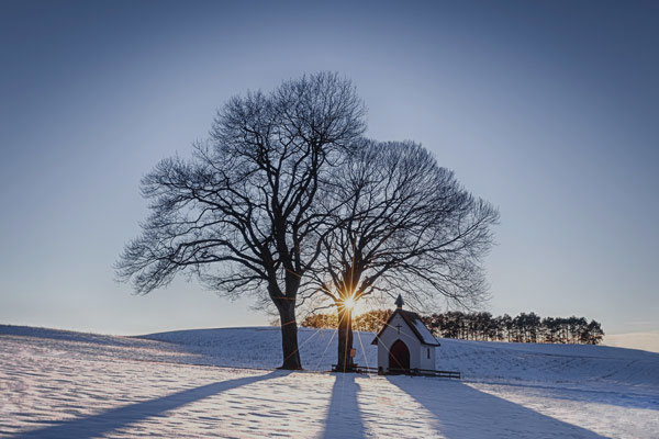 Winterdienst, Baum im Winter mit Kapelle © fotolia / Christian Michelbach